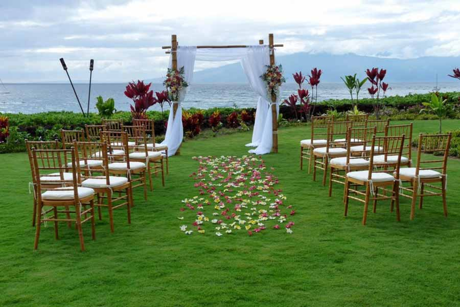 Eco Friendly Wedding