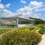 Landscaping-for-Commercial-